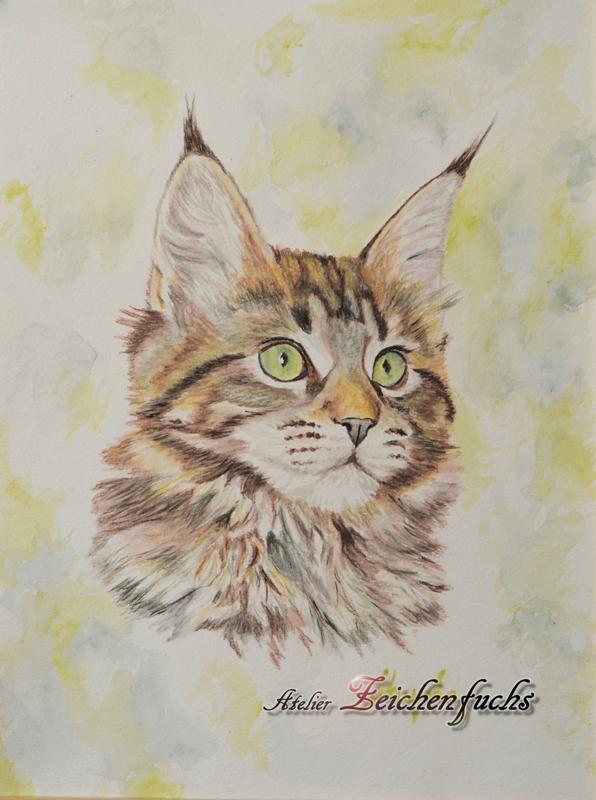 Katzenportrait als Aquarell