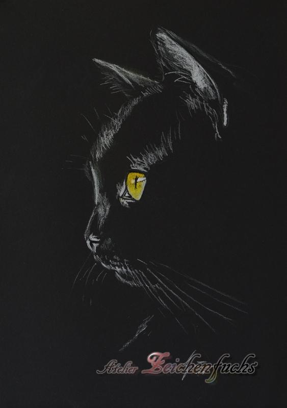 Pastell einer Katze